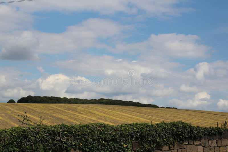 Farmland of harvested crops and. Farmland of harvested crops with woods royalty free stock photos