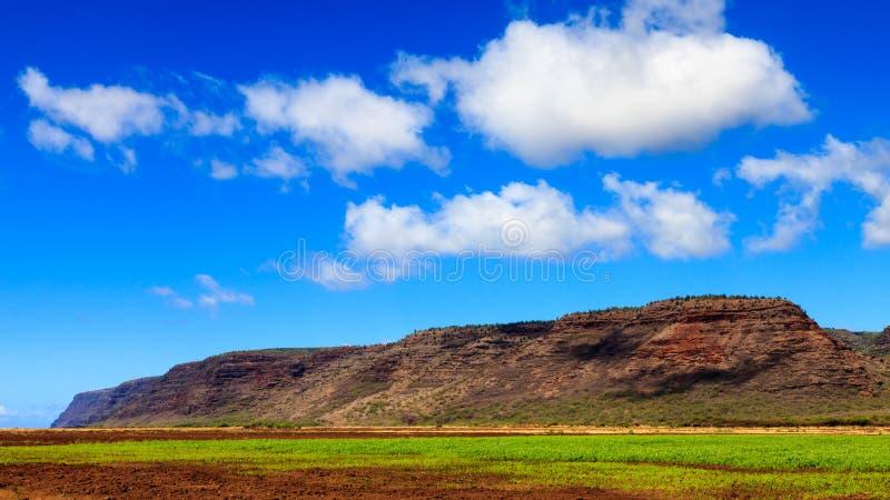 Farmland in Kauai