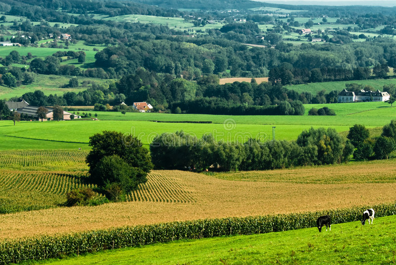 Farmland landscape royalty free stock photos