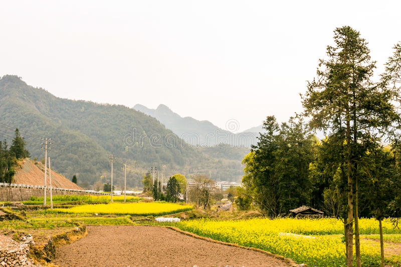 Farmland and mountain royalty free stock images