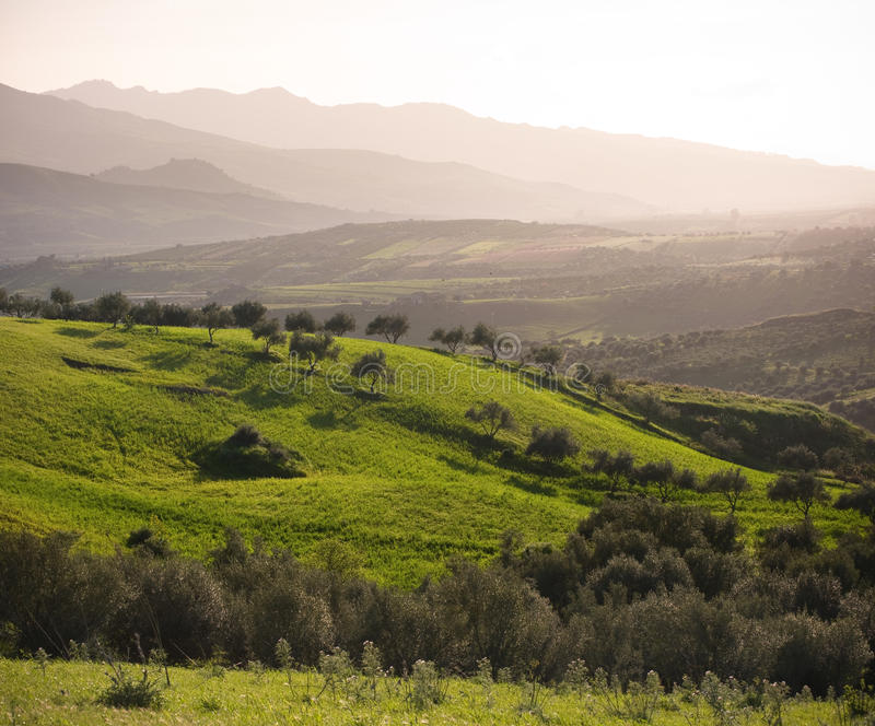 Farmland And Mountain Range In Misty Twilight stock photos