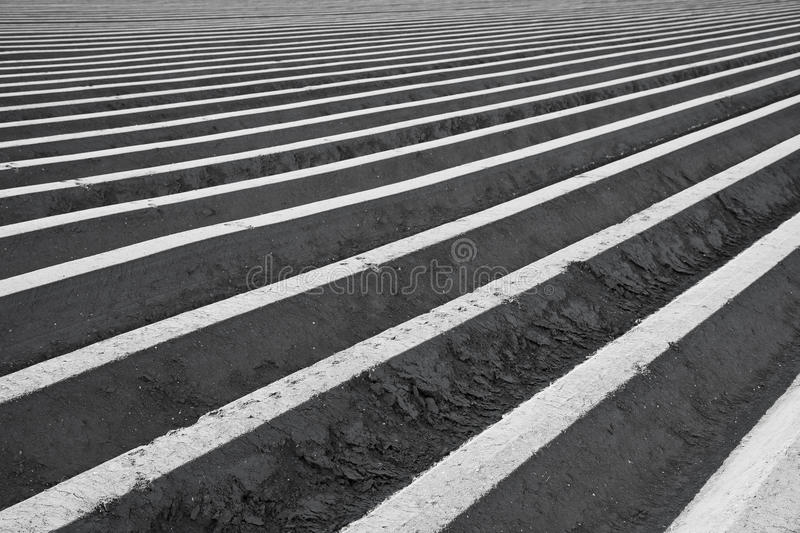 Download Farmland In The Netherlands Waiting For Spring Stock Photo - Image of rich, cropland: 15917314