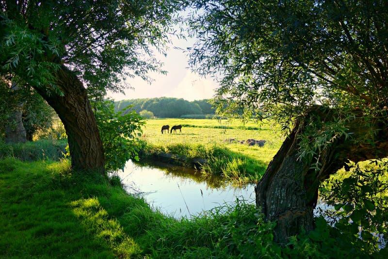Farmland and river stock image