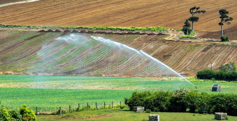 Water cannons used for irrigation stock image