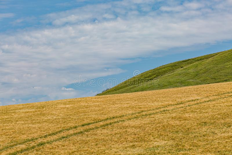 Hills and Fields in the South Downs. Farmland in Sussex on a sunny summers day royalty free stock photo