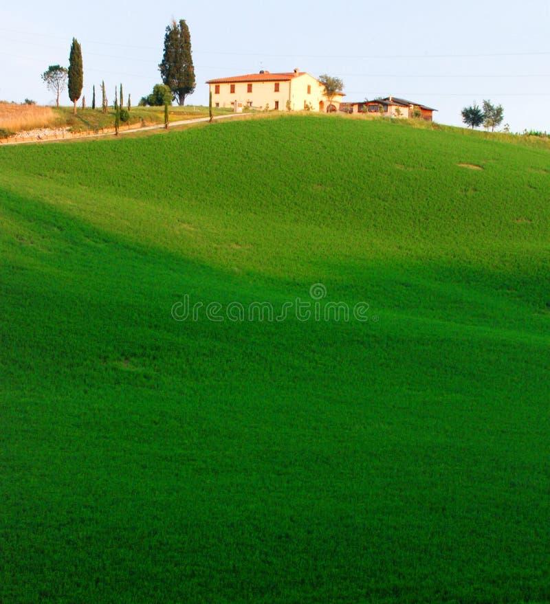 Farmland in Tuscany royalty free stock photos