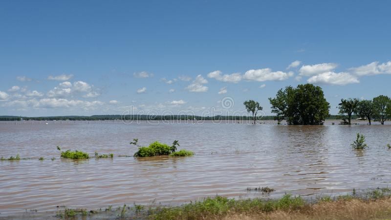 Farmland under water during spring flooding, Arkansas River. Trees are in standing water in the field during spring flooding. Muddy  water covering cropland stock photography