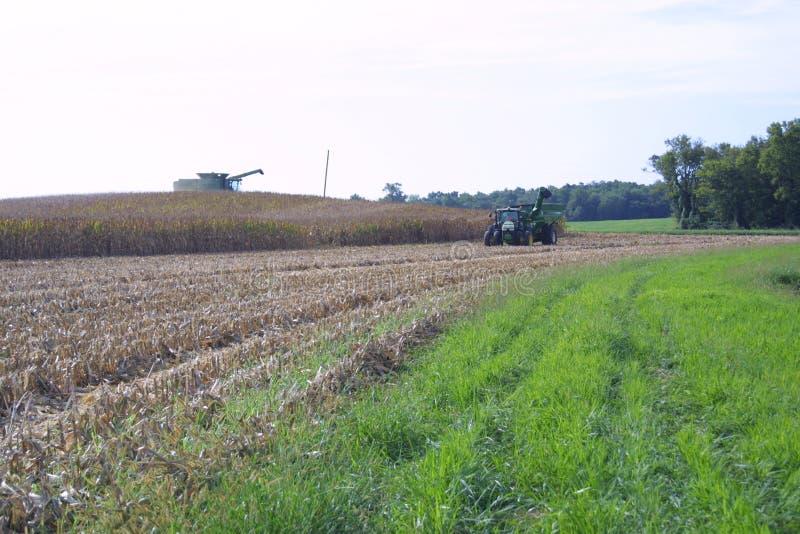 Farmland USA в Иллинойсе, 2019 III-A стоковые изображения
