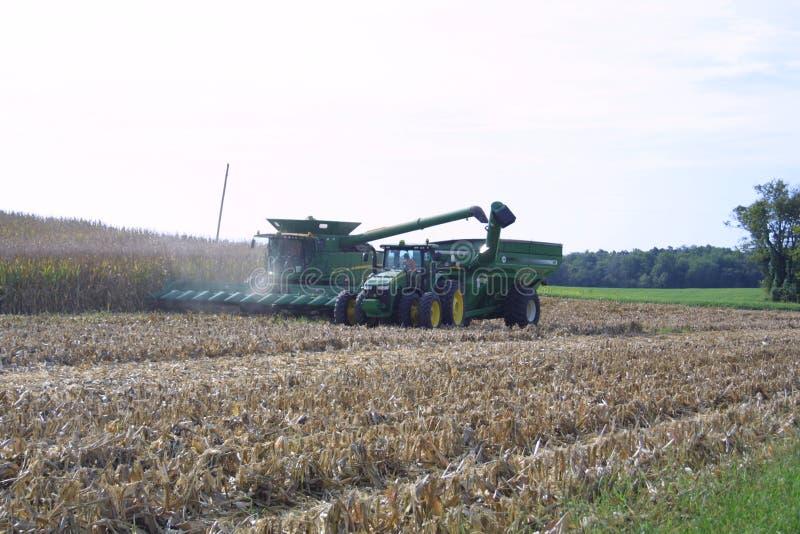Farmland USA в Иллинойсе 2019 VI-A стоковые фотографии rf