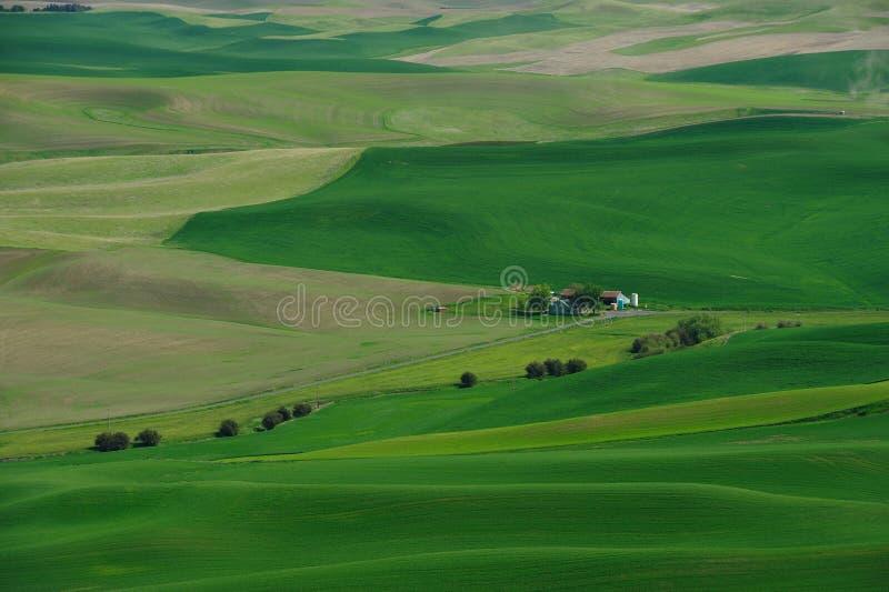 Farmlands stock photography