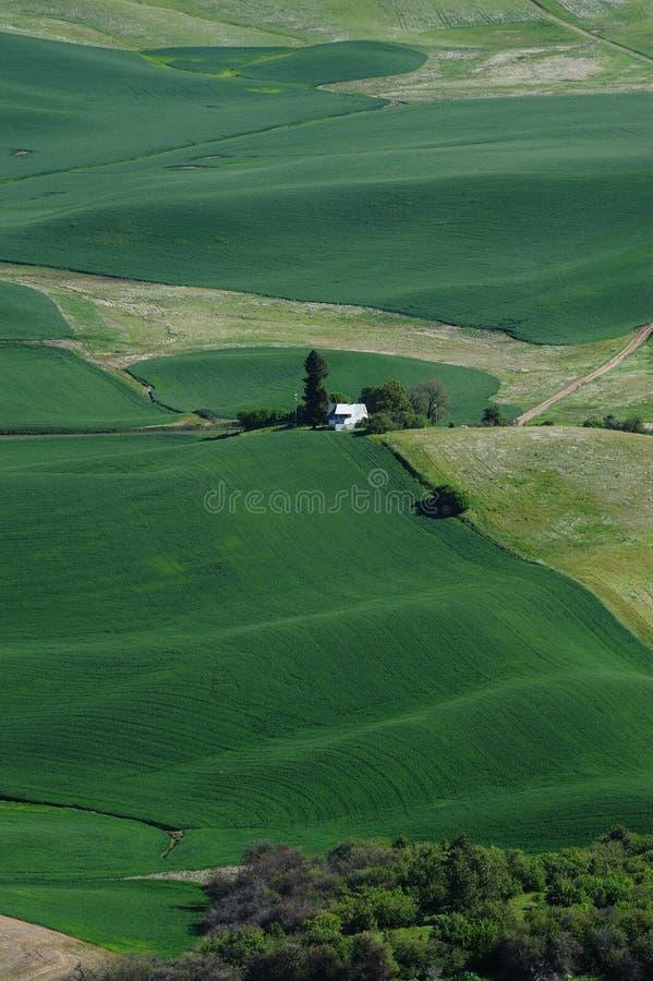 Farmlands stock photos