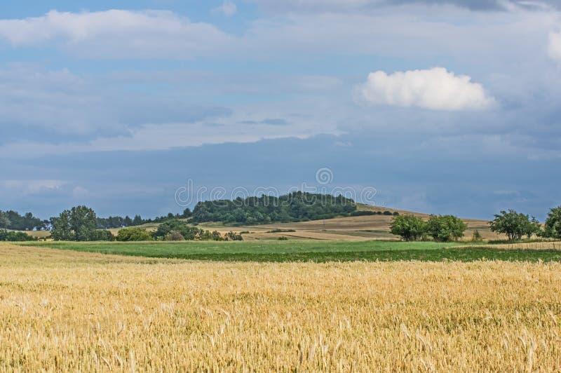 farmlands zdjęcie stock
