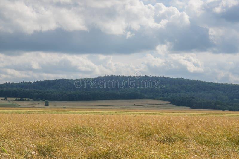 farmlands zdjęcia stock