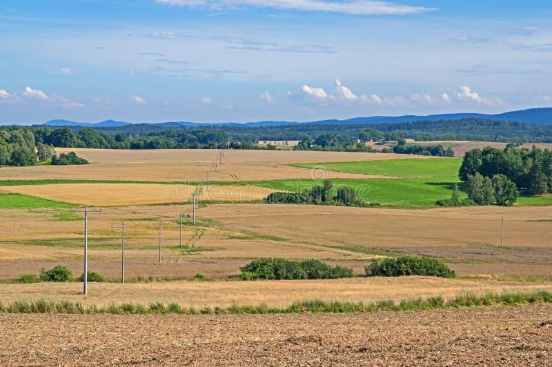 farmlands obrazy royalty free