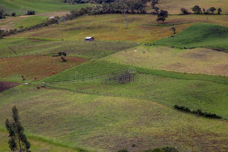 Farmlands in different stages of the crops and a house. Multiple exposure of farmlands in different stages of the crops and a house, at the high mountains of the royalty free stock images