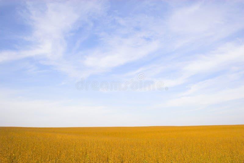 Farmlands and fields stock photos