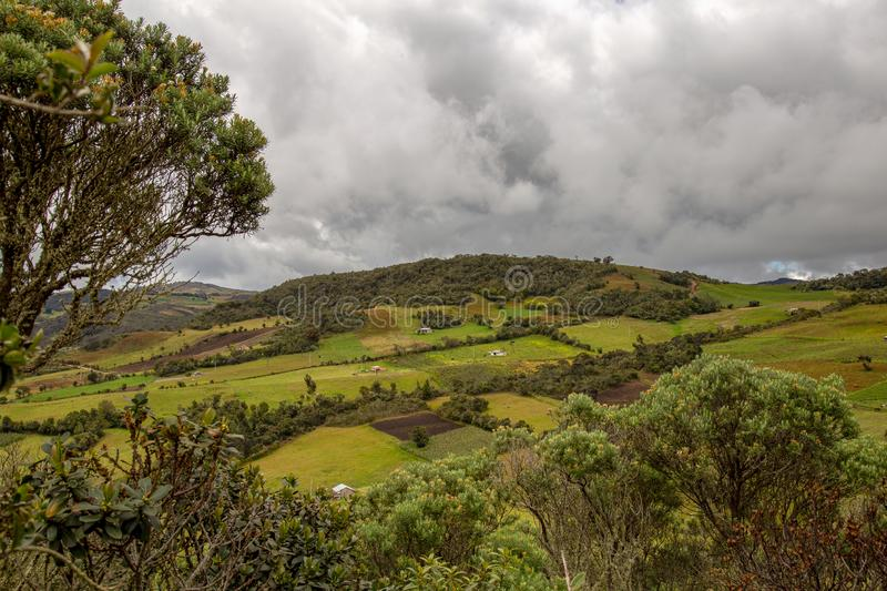 Farmlands in the high mountains. Of the central Andes of Colombia in an overcasted day royalty free stock images
