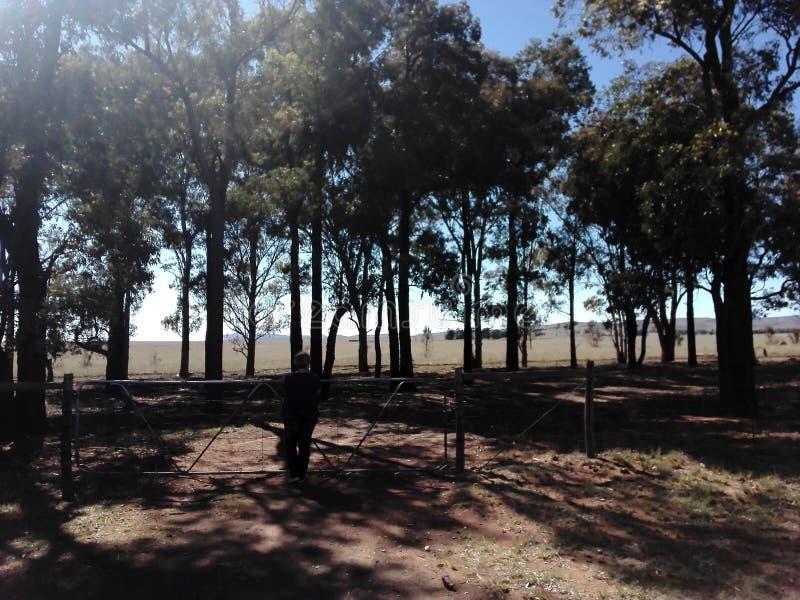 farmlands fotografia royalty free