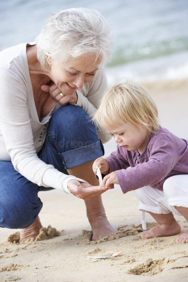 Farmor och sondotter som ser Shell On Beach Together royaltyfri fotografi
