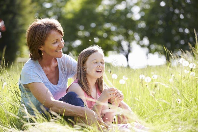 Farmor- och sondottersammanträde i sommarfält arkivfoton