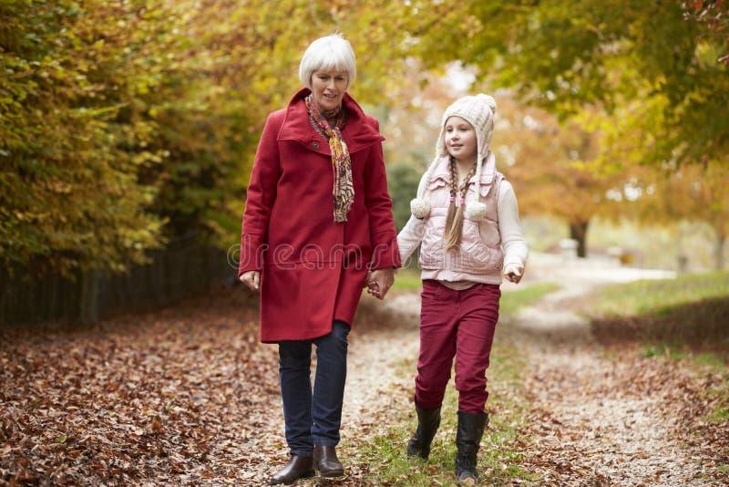 Farmor som promenerar Autumn Path With Granddaughter arkivbild