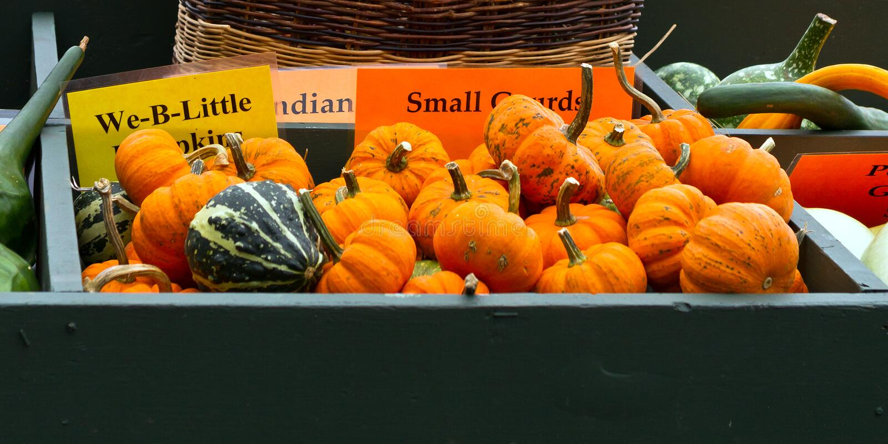 Farmstand del borde de la carretera del otoño fotos de archivo
