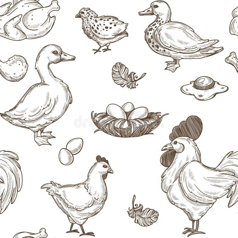 Farmy drobiu nakreślenia wzoru wektorowy bezszwowy tło ilustracji