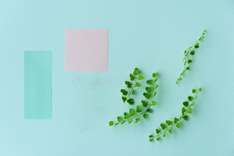 Farn-Betriebsurlaub des Sommers neuer gr?ner mit Rosa und blauer Papieraufkleber f?r Naturhintergrund lizenzfreies stockfoto