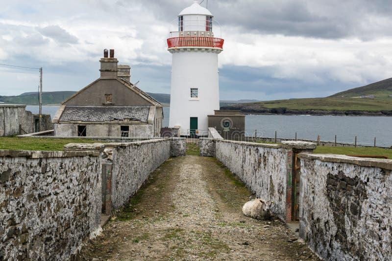 Faro de Ballyglass y una oveja fotos de archivo