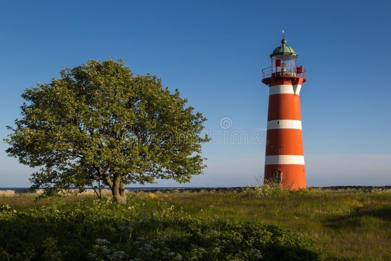 Faro de Närsholmen con el árbol debajo de un cielo despejado en luz del sol de la última hora de la tarde, Gotland, Suecia imagen de archivo