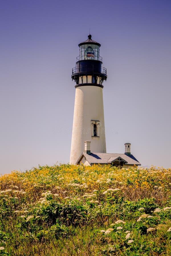 Faro de Yaquina embellecido por los wildflowers en la costa de Oregon fotos de archivo libres de regalías