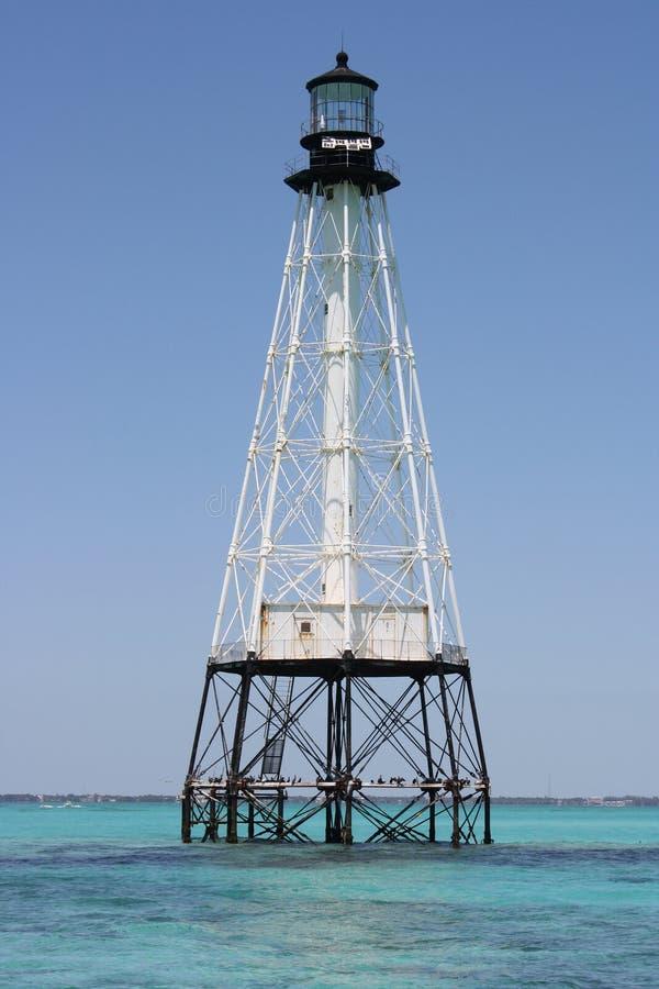 Faro della scogliera del coccodrillo fuori dei tasti della Florida fotografia stock libera da diritti