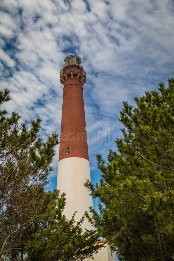 Faro di Barnegat sull'isola di Long Beach, NJ, circondato dai grandi pini sempreverdi un giorno di molla soleggiato con cielo blu fotografie stock libere da diritti