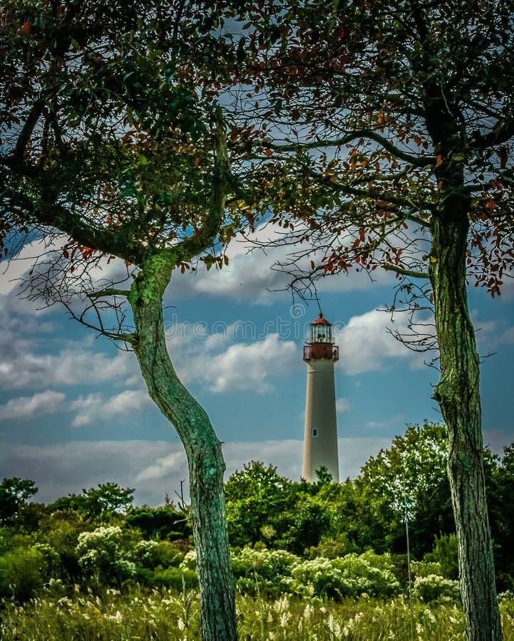 Faro di Cape May, New Jersey immagine stock libera da diritti