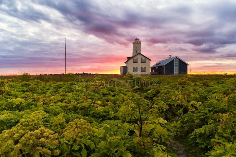 Faro di Grotta Islanda fotografia stock libera da diritti