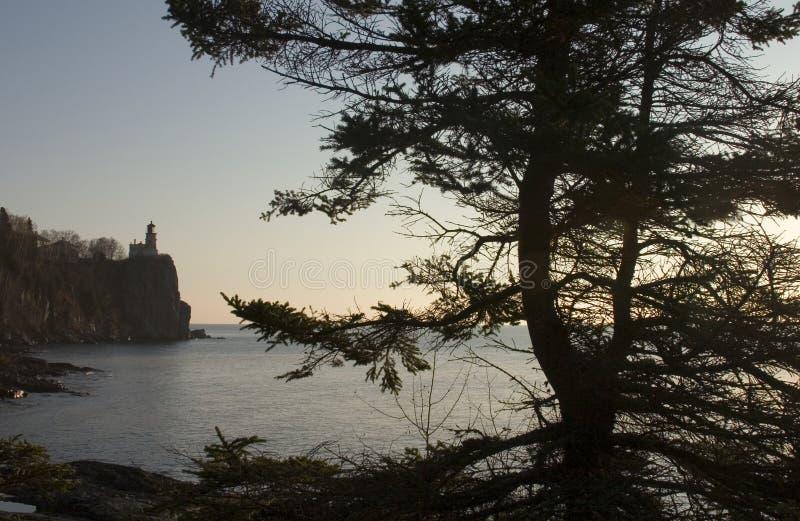 Faro enmarcado por Tree imagen de archivo
