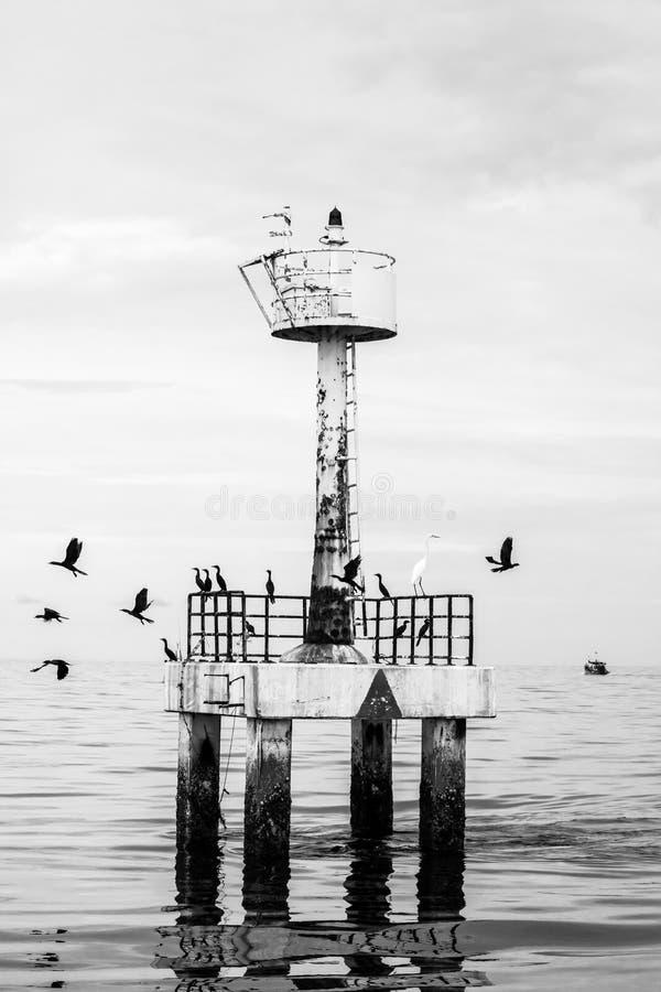 Farol com os pássaros no mar, Tailândia foto de stock royalty free