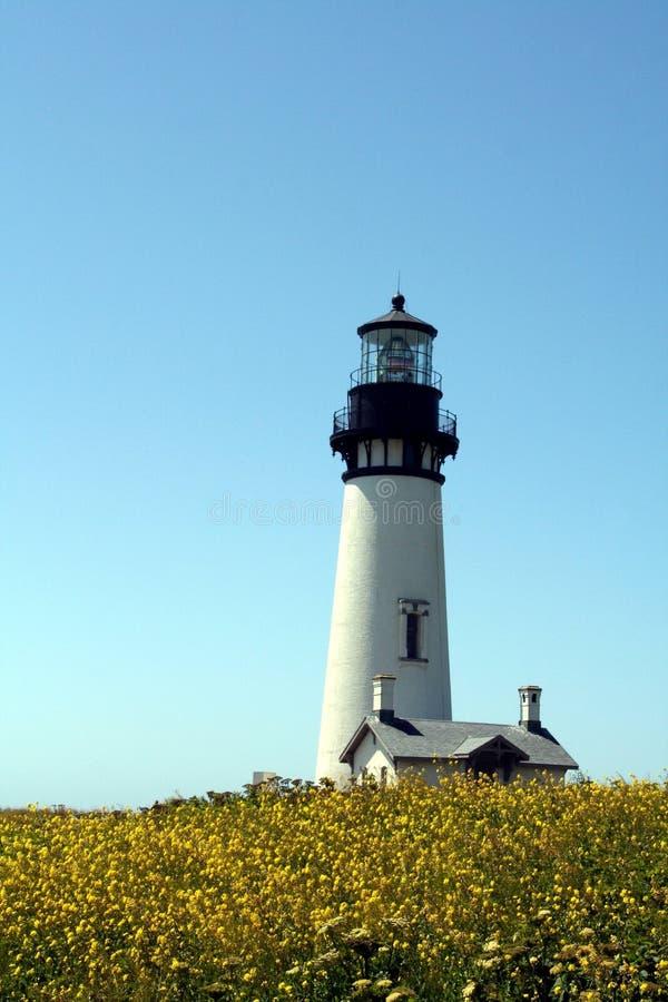 Farol da costa de Oregon imagens de stock