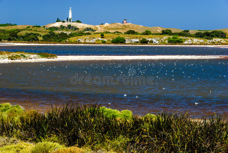 Farol do lago de sal da ilha de Rottnest imagem de stock