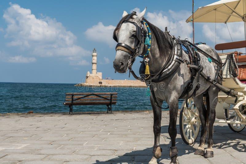 Farol e cavalo foto de stock