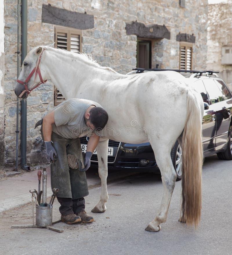 Farrier do cavalo que trabalha na manhã fotografia de stock royalty free