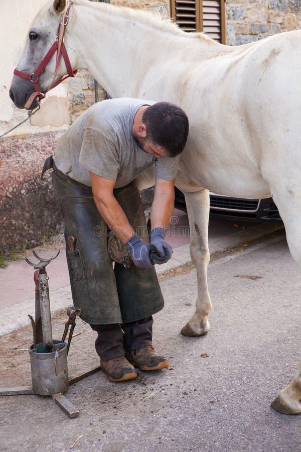 Farrier do cavalo que trabalha na manhã fotos de stock royalty free