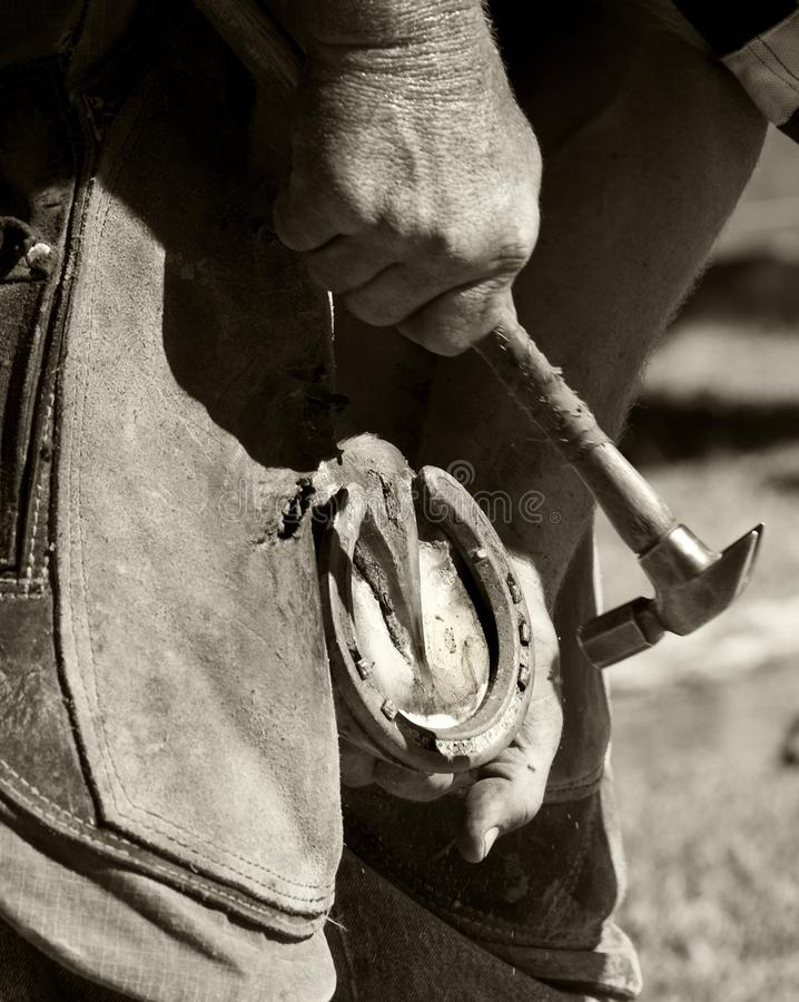 Farrier na ferradura cabendo do trabalho imagem de stock royalty free