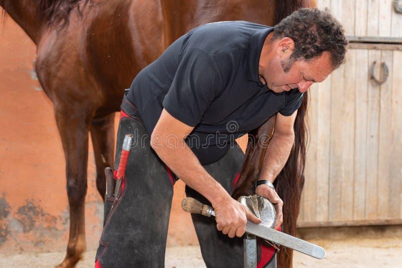 Farrier no trabalho no casco dos cavalos imagem de stock royalty free