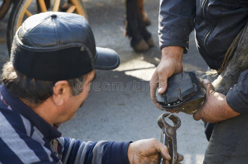 farrier O casco do cavalo que prega em sapatas fotos de stock