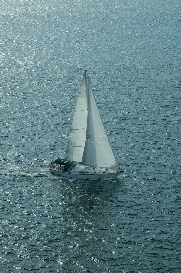 fartyg 2 seglar arkivbild