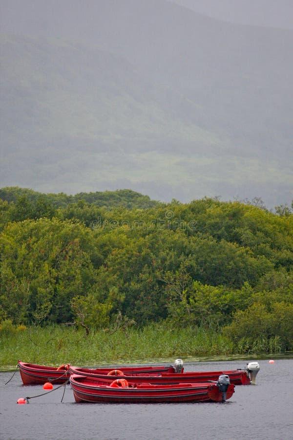 Fartyg förtöjde på Muckross sjön nära Killarney, ståndsmässiga Kerry royaltyfria foton