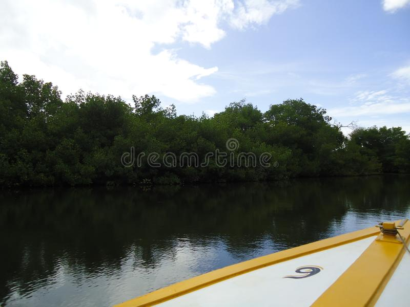 Fartyg och ett mangroveträsk arkivbild
