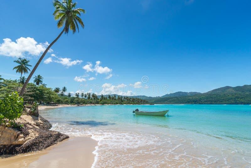 Fartyg på det karibiska havet för turkos, Playa Rincon, Dominikanska republiken, semester, ferier, palmträd, strand arkivfoton