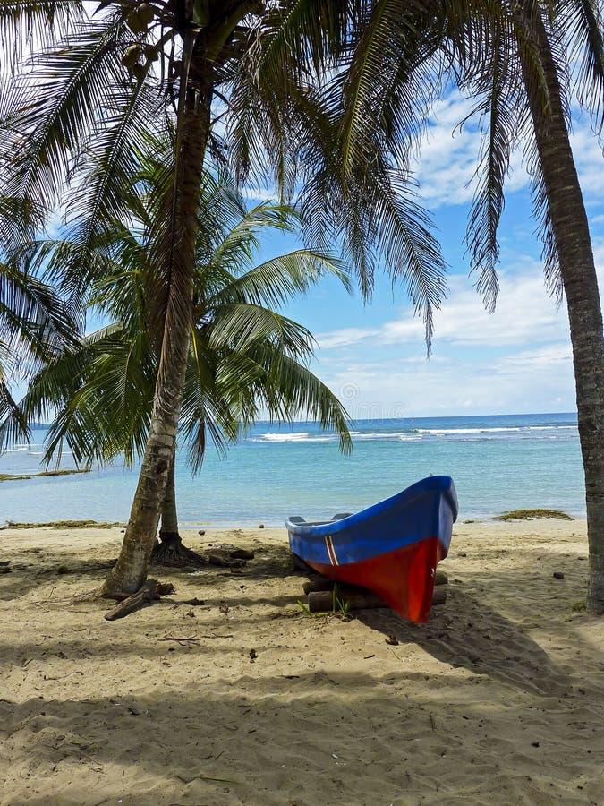 Fartyg på en tropisk strand med kokospalmen royaltyfri fotografi